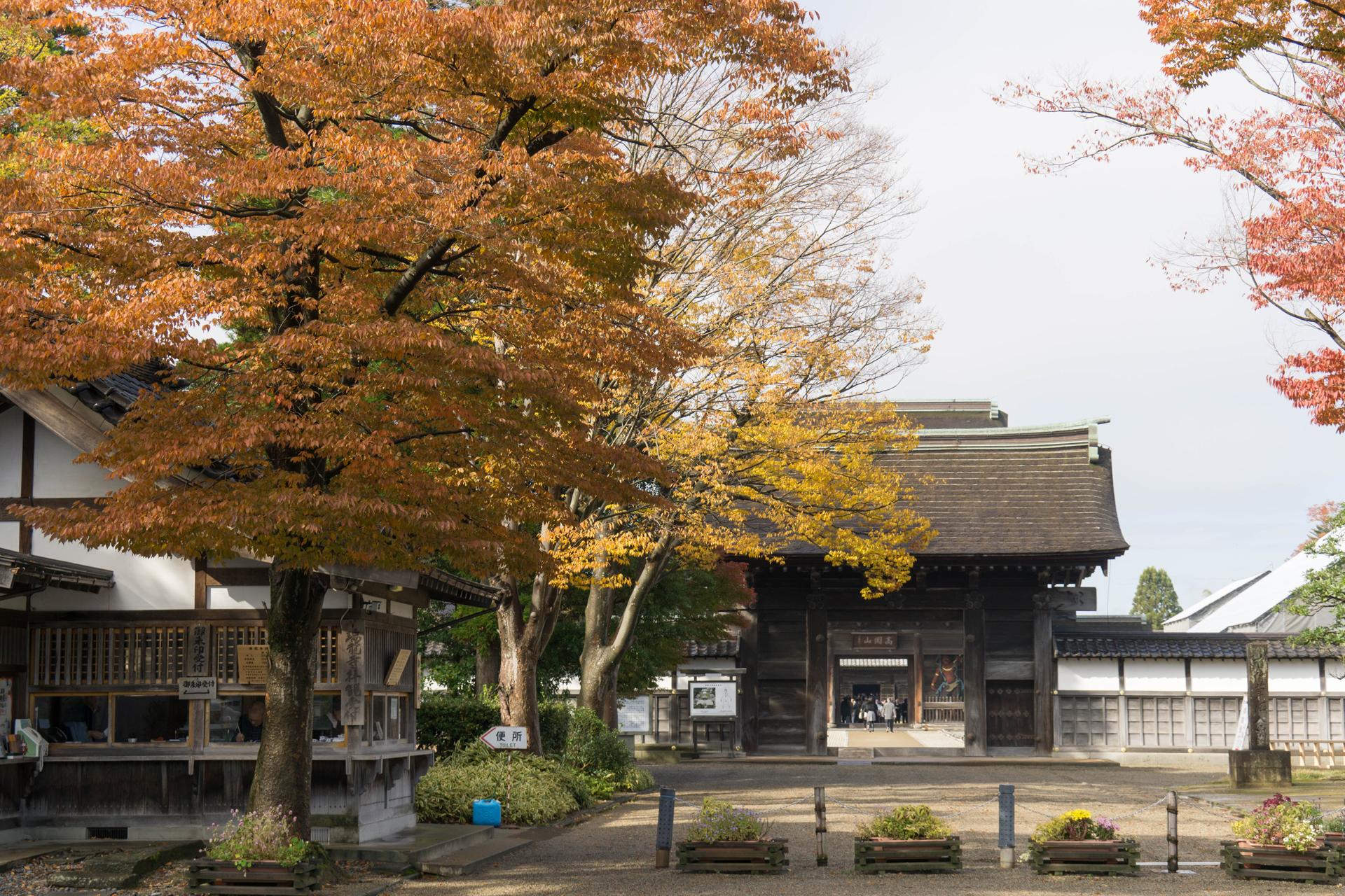 168_zuiryuji02_04