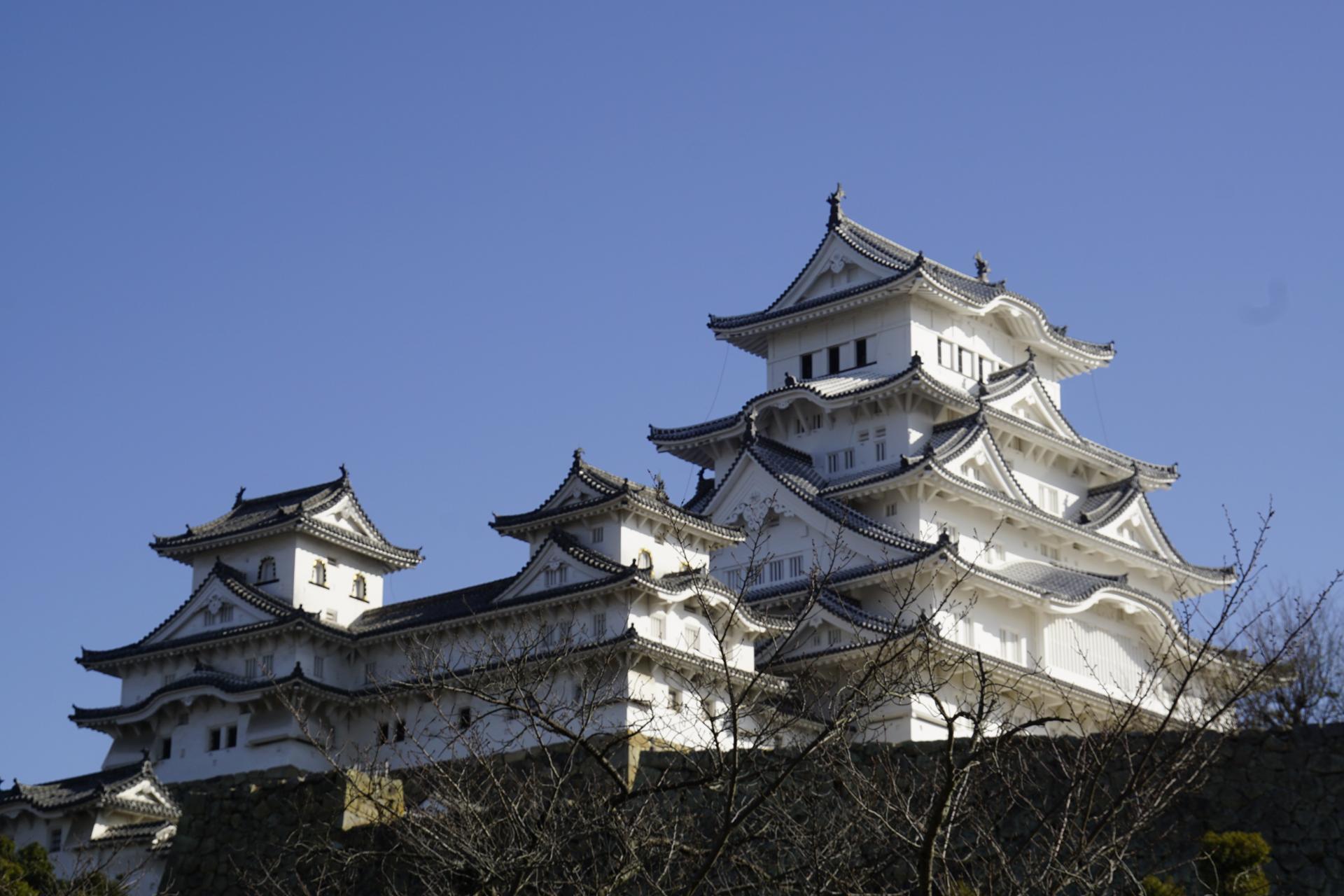 姫路城の画像 p1_21